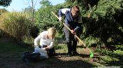 Kiedyś sadzili żonkile, dziś zbierają żołędzie. Pomagają, jak mogą