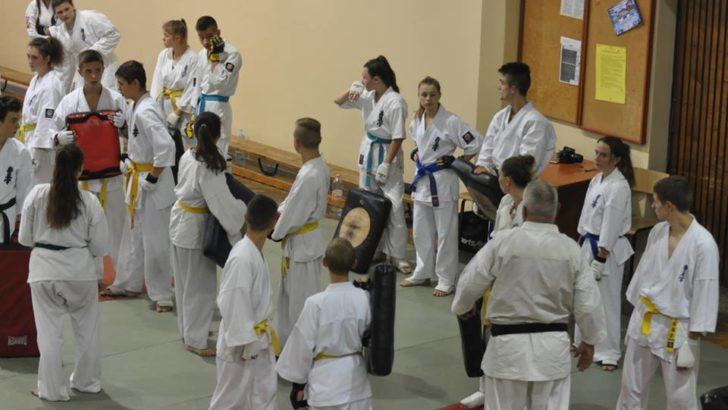 Wojownicy kyokushin bliscy kadry narodowej