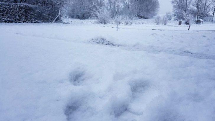Przyszła do nas zima…