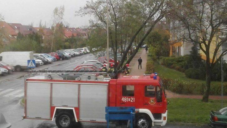 Przez silny wiatr strażacy mają mnóstwo pracy