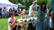 Słodka impreza w parku Wrocławskim