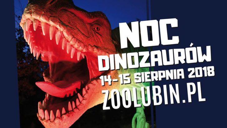 Kino pod chmurką i nowe figury w parku Wrocławskim – już jutro!