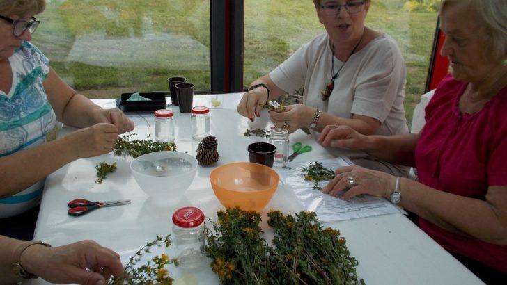 Kosmetyki ze swojego ogródka