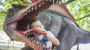 Noc z dinozaurami