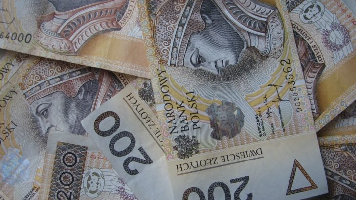 Magistrat przyznał pieniądze organizacjom