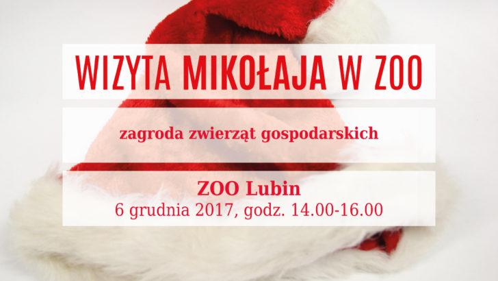 Mikołaj w lubińskim zoo