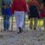 Cztery pory roku z nordic walking