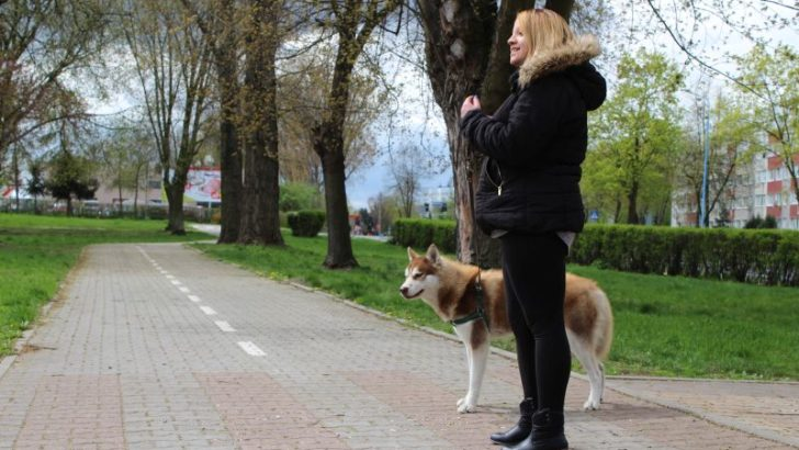 Psi park do wakacji – pierwsze takie miejsce w Lubinie
