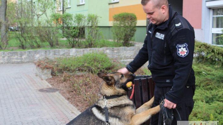 Rambo z lubińskiej policji