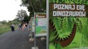 Poznaj erę dinozaurów